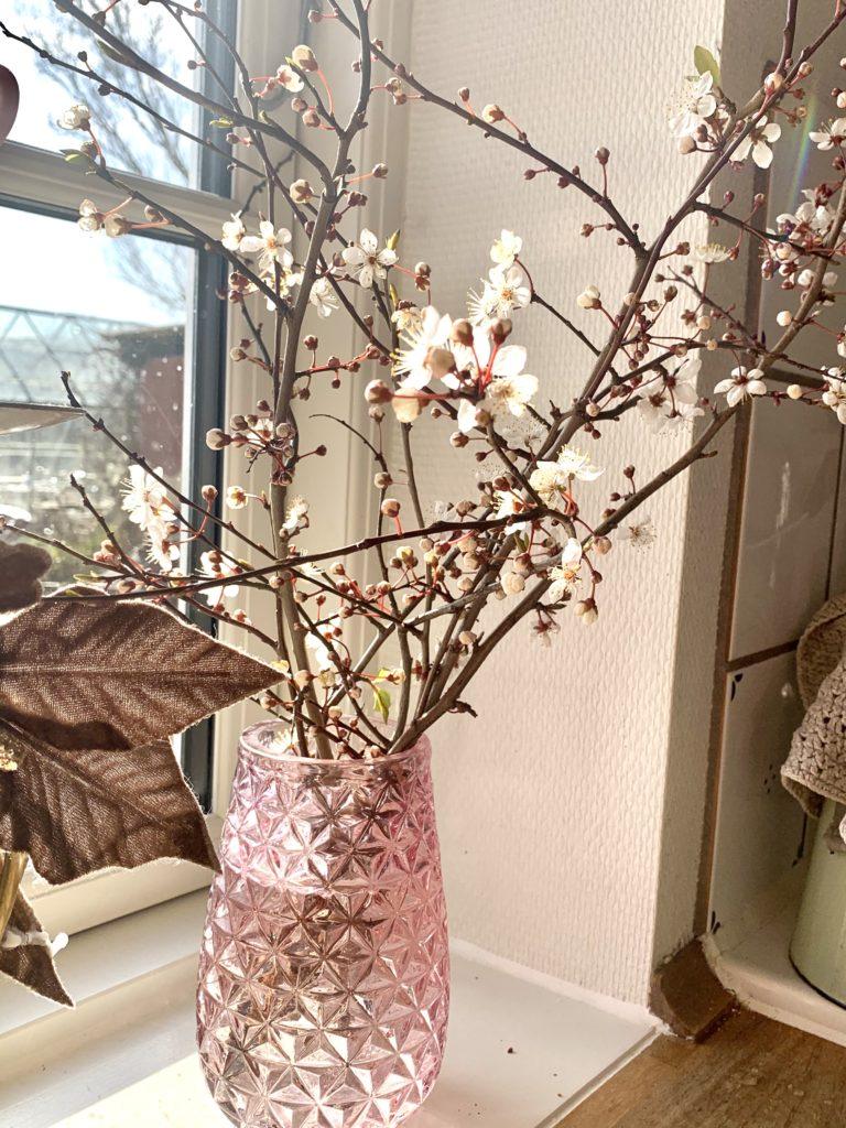 Kirsebærgrene fra haven. Så springer foråret ud i køkkenet.